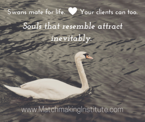 Swan+quote