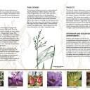 16 Hopper_Herbarium